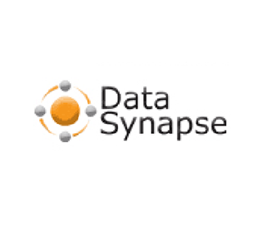 DataSynapse